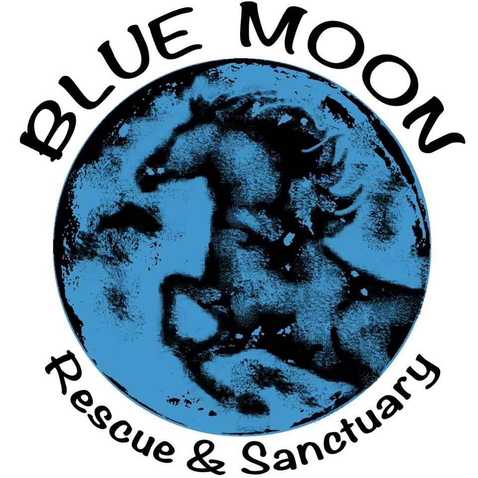 Blue Moon Rescue